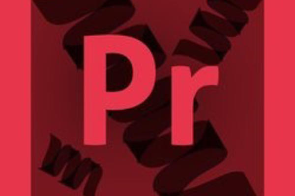 ProSightPC logo